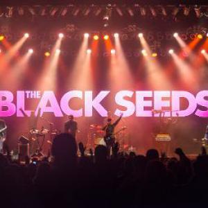The Black Seeds