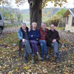 Träd, Gräs och Stenar